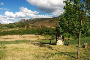 Casa Cerio - Casa Rural en Navarra - Jardín - 06